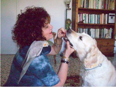 סרינה רון שטוסל תרפיה בעזרת בעלי חיים