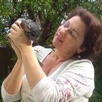 איריס קולטוצ'ניק - פסיכותרפיסטית בעזרת בעלי חיים