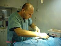 """ד""""ר טל מאייר רופא וטרינר ומנתח וטרינרי בחדר ניתוח"""