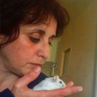 מיכל מחזיקה אוגר טיפול רגשי מסתייע בבעלי חיים