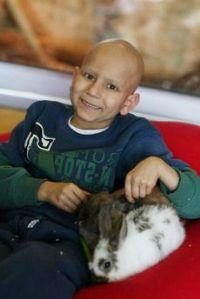 ילדה חולת סרטן  וארנב