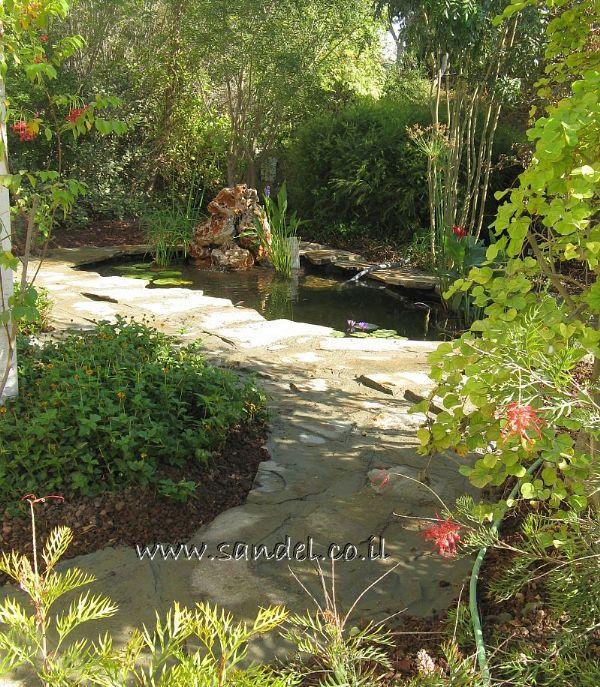 בריכת נוי עם מסלעה, צמחיה טבעית ודגי נוי
