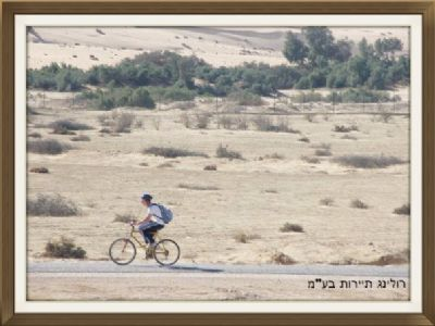 השכרת אופניים 5