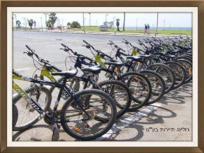 השכרת אופניים 4