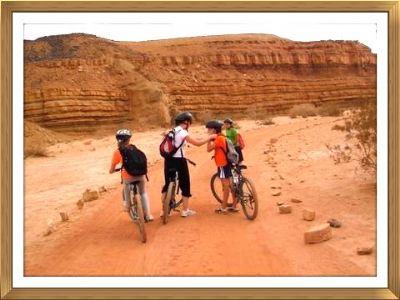 מסלול אופניים נחל ארדון מכתש רמון